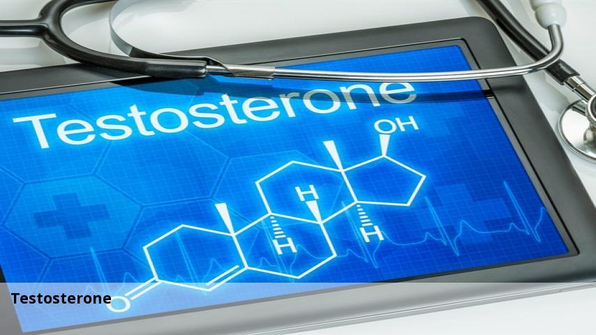 La testosterona