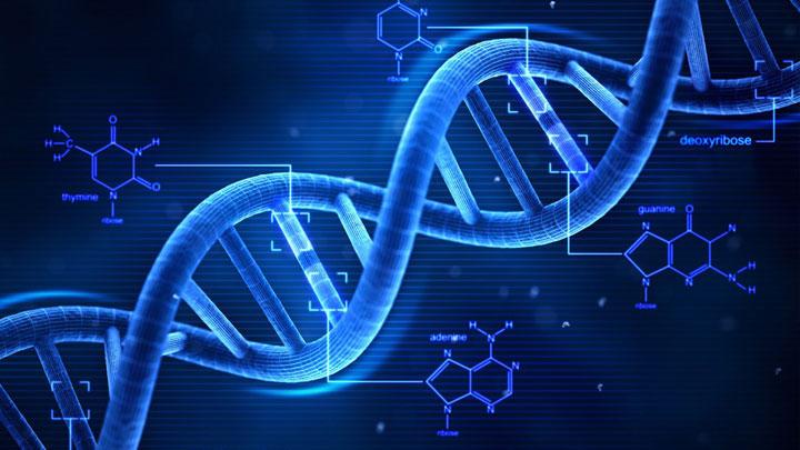 ¿Afectan las alteraciones genéticas a la fertilidad?