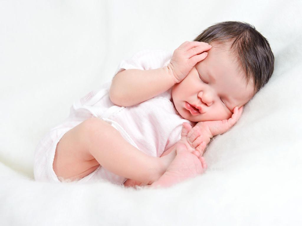 Diferencias entre cigoto, embrión y feto