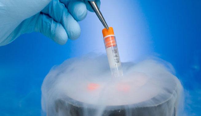 ¿Cuánto tiempo duran los óvulos congelados?