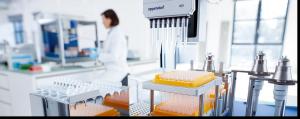Transferencia de microbioma suficiente para inducir fenotipos de autismo en ratones